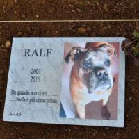 Milano, cura per tutti e rituale libero: nel primo cimitero degli animali già 40 addii