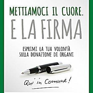 Donazione organi, a Milano la scelta si fa all'Anagrafe insieme con la carta di identità