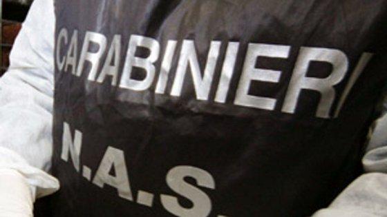 Milano, frutta e verdura per Caritas e Croce rossa rivendute anche all'estero: maxi truffa all'Ue, 12 arresti