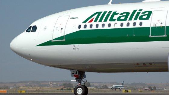 """Alitalia lascia a terra il cane, condannata: """"Volontà di non informare i passeggeri dei propri diritti"""""""