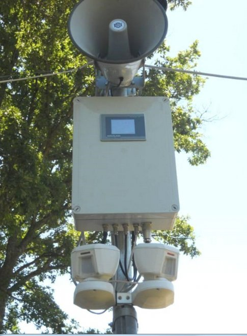 Varese, sulle strade vicino ai boschi arrivano i 'semafori' per i cinghiali