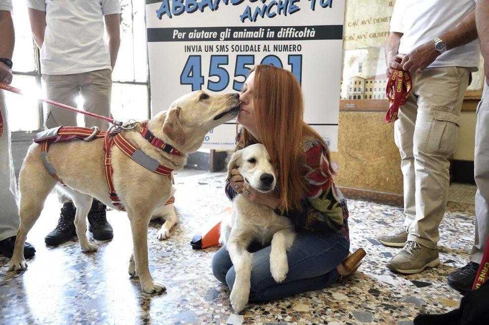 Milano, Brambilla contro l'abbandono dei cani: che bacio per la causa!
