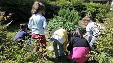 134 orti per conoscere  la natura: il progetto nelle scuole dell'infanzia