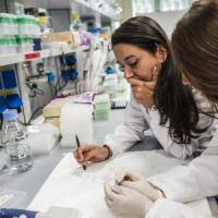 Regione Lombardia, 40 milioni a fondo perduto per finanziare la ricerca