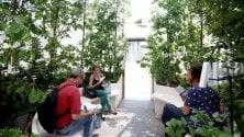 Expo-giardini Montanelli    il mini Bosco dell'Austria per sedere e rinfrescarsi