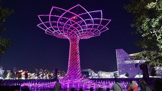Expo, riapre l'Albero della Vita: spettacoli di musica e giochi d'acqua ogni weekend