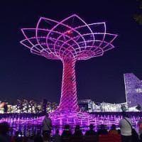 Expo, riapre l'Albero della Vita: spettacoli di musica e giochi d'acqua
