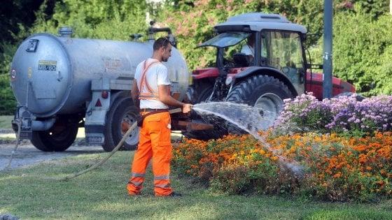 Ufficio Verde Pubblico Comune Di Udine : Milano giardinieri per caso addio per curare il verde pubblico