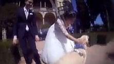 Matrimoni da cani, anche Fido ha il suo filmino