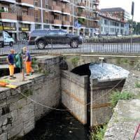 Milano, bicchieri e spazzatura: dopo la movida la pulizia del Naviglio Pavese
