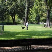 Aree cani a Milano, il Comune avvia il restyling: nuovi grandi spazi con