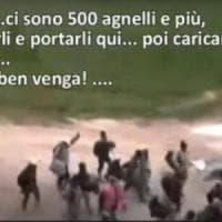 Trasportavano migranti con auto private sulla rotta balcanica: 21 arresti in Lombardia