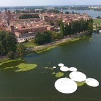 Non solo 'Floating Piers', Mantova vara le isole galleggianti a forma di loto
