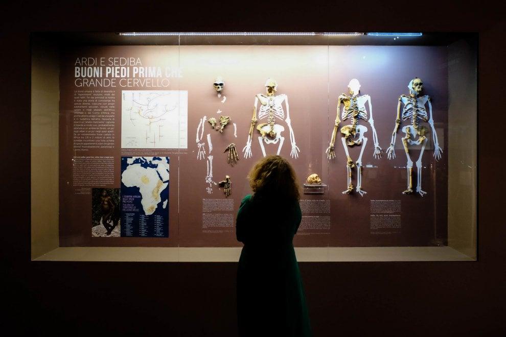 Homo Sapiens, l'evoluzione in mostra al Mudec di Milano