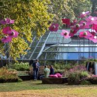 Como si risveglia tra fiori e installazioni: c'è Orticolario