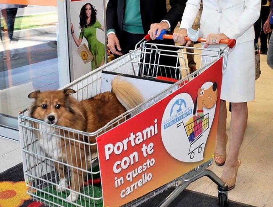 Animali, la spesa pet friendly con il cane nel carrello