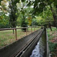 Brescia, 22enne violentata nel parco: sì al carcere per i tre profughi