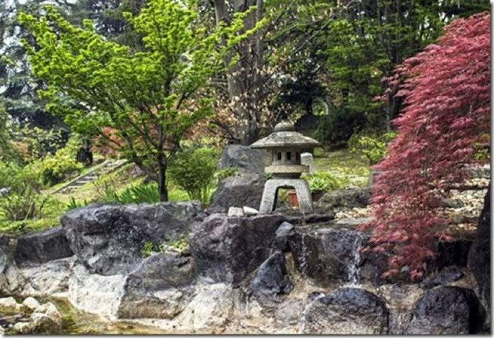 varese la cerimonia del t nel giardino giapponese di