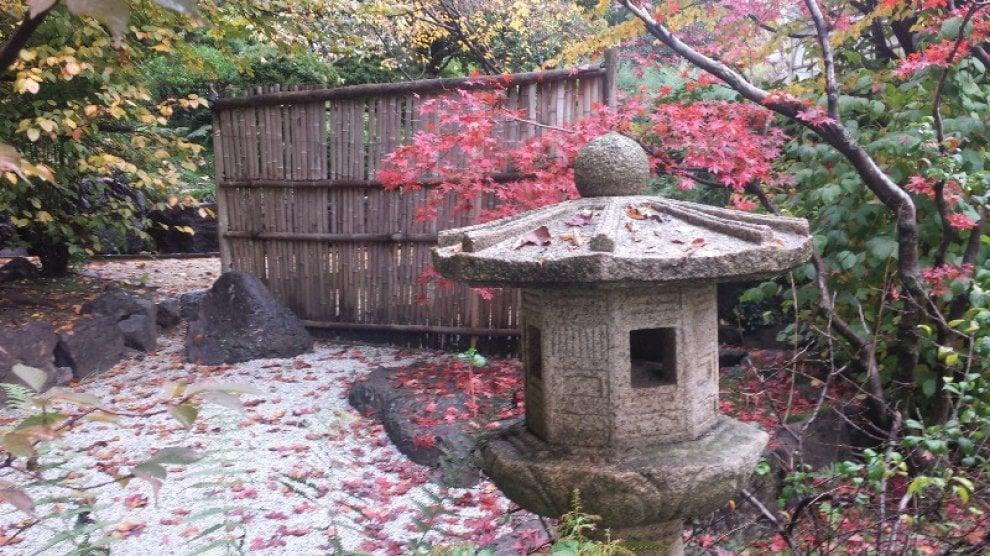 Varese la cerimonia del t nel giardino giapponese di - Giardino del te ...