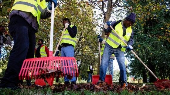 """Milano, il piano """"profughi al lavoro"""" è partito: grandi pulizie nel parco Sempione, poi tocca ai graffiti"""