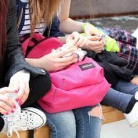 Università, a Milano trionfa la schiscetta: 6 studenti su 10 scelgono il