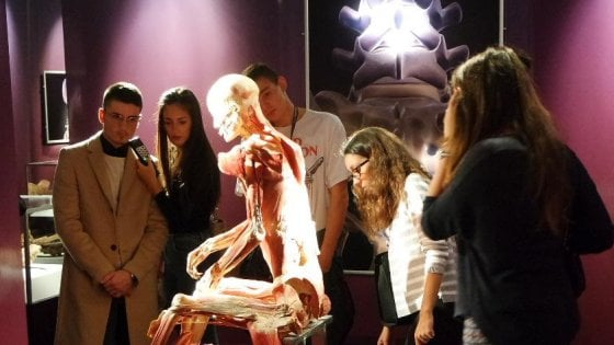 Milano, raffica di malori davanti ai cadaveri in mostra: apre l'infermeria di Real Bodies
