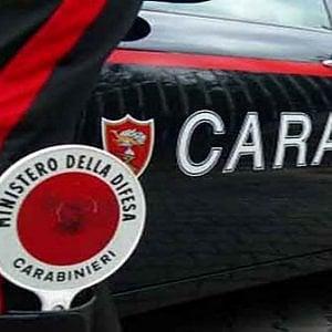 """Milano, taglia la testa al cane: 53enne denunciato. """"Non ho i soldi per farlo sopprimere"""""""