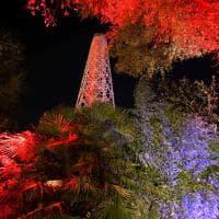 Milano, per una notte la Torre Branca si accende di rosso pomodoro
