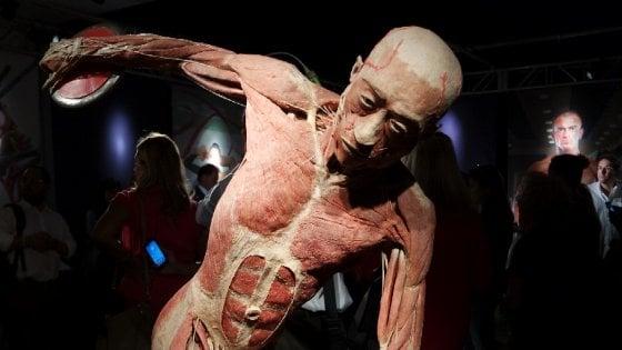 Milano, selfie a sfondo sessuale con i cadaveri di Real Bodies: tre ventenni rischiano la denuncia