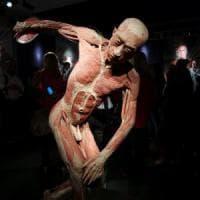 Milano, selfie a sfondo sessuale con i cadaveri di Real Bodies: tre ventenni