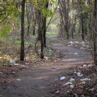 Milano, 52enne trovato senza vita nella zona del boschetto dell'eroina