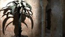"""La curiosità: una palma  in bronzo segna    il """"punto zero"""" della città"""