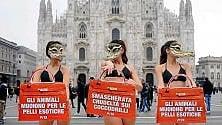 """Modelle animaliste in biancheria: """"No all'uso della pelle di coccodrillo"""""""