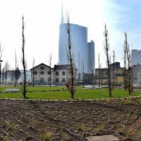 Milano, lontana dalle polemiche nasce la Biblioteca degli alberi di Porta Nuova