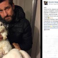 Milano, coniglio trovato per strada: l'appello su Facebook di Edoardo Stoppa