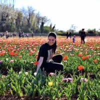 Milano, tutti in coda per i tulipani: apre il primo campo 'U Pick' d'Italia