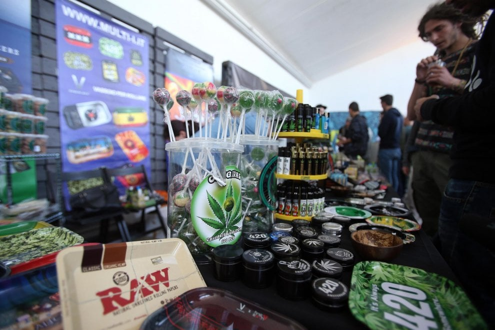 Cannabis day, all'Hempfest di Milano: tra muffin e canapa industriale