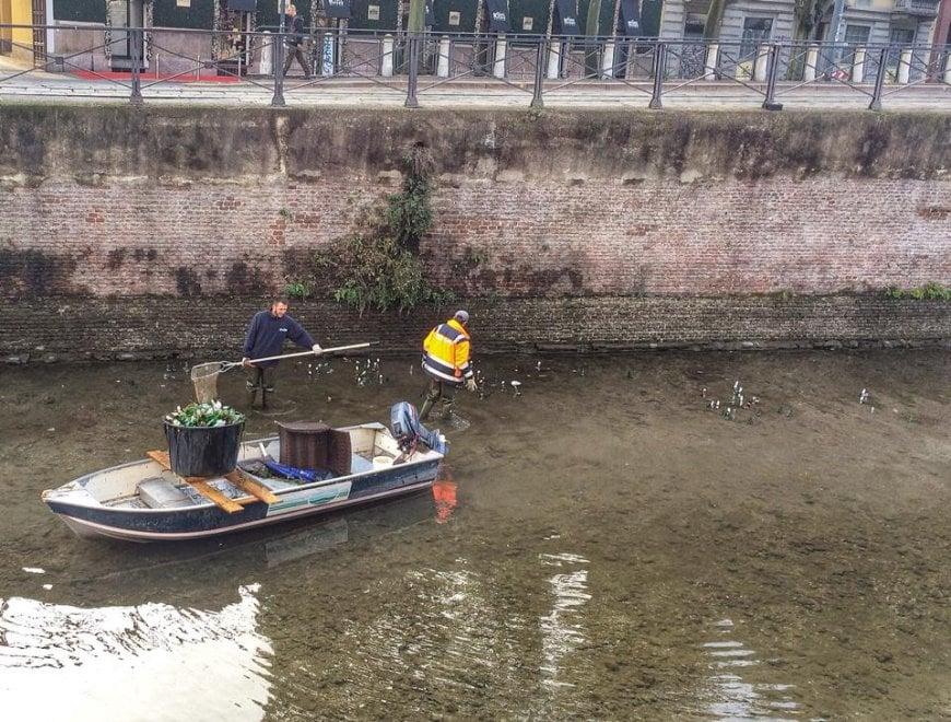 Milano, i canottieri puliscono i Navigli: spuntano biciclette e cerchioni di auto