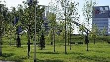 Portello, l'ex Alfa Romeo  ora è un magnifico parco