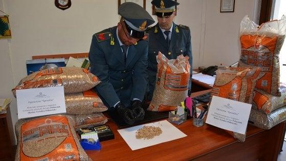 Varese, plastica nel pellet: sequestrate 70 tonnellate di combustibile pericoloso