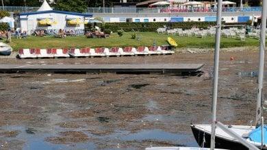 Foto  Idroscalo senza fondi: asfissiato  da alghe e degrado, balneazione  a rischio