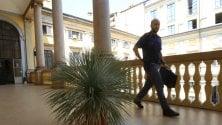 La Yucca rubata dal tassista alla polizia è al sicuro in questura