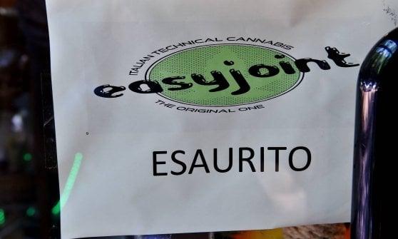 Cinquanta sfumature (e tipologie) di marijuana legale: a Milano il negozio di talee di cannabis