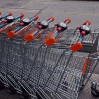 Milano, nel carrello del supermercato spunta un serpente lungo un metro