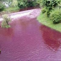 Milano, le acque del Lambro colorate di rosso: scatta l'allarme ecologico