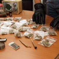 Milano, la serra di marijuana in cantina: arrestati fratelli universitari