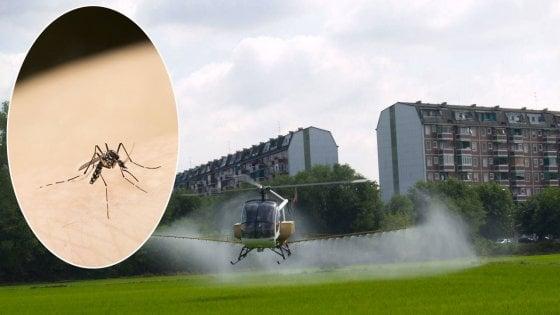 Milano invasa dalle zanzare, cittadini infuriati: tutta colpa della disinfestazione in ritardo