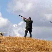Brescia, lotta ai bracconieri: 15 denunce in 15 giorni, più di 1 km di reti per uccelli sequestrate