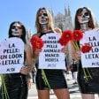 Foto  Le modelle animaliste  di Peta contro l'uso  della pelle: show in Duomo