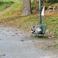 Milano, senzatetto prende a calci nella schiena una donna incinta e scappa